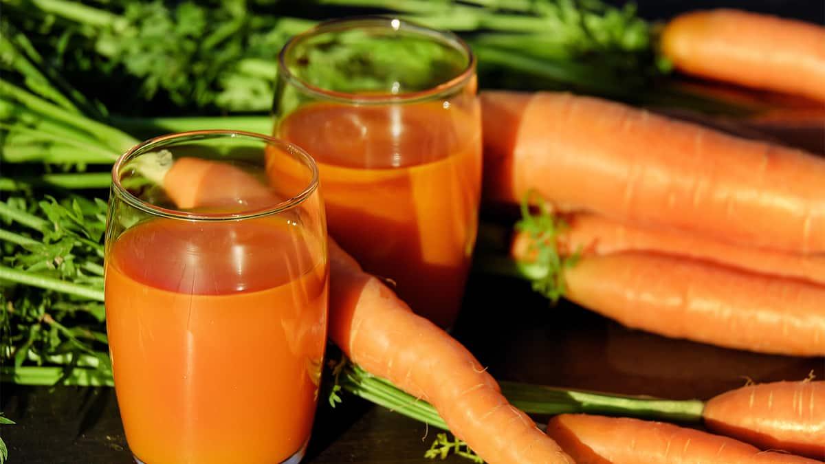 Immunförsvar och hälsosam kost